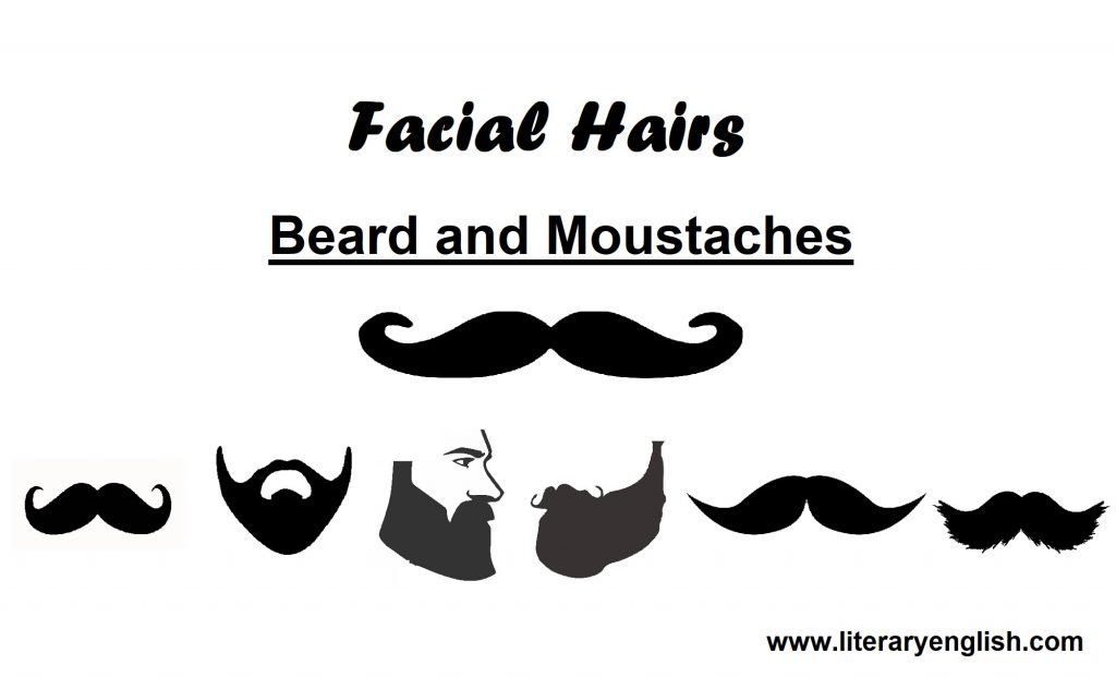 facial hairs beard and moustaches